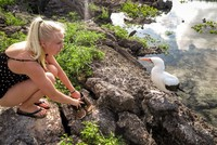 Galapagos Islands Vacation Cruises to the Galapagos Islands for 3 passengers July 2017