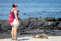 Galapagos Touren Cruises to the Galapagos Islands for 4 people January 2017
