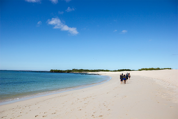 Cruises for couples to the Galapagos Islands December 2019