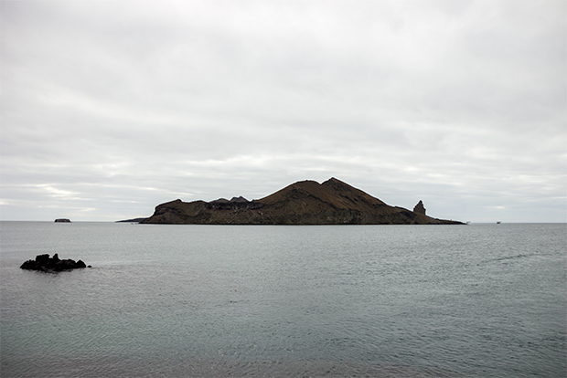 Exclusive Cruises to the Galapagos Islands February 2017