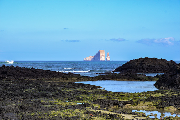 Cruises to the Galapagos Islands for 10 people 2017