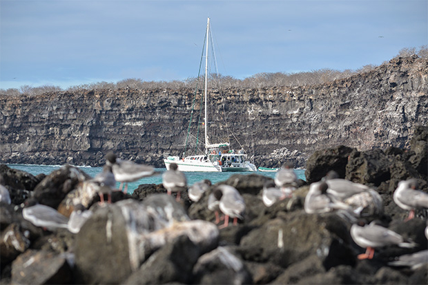 Luxury catamarans to the Galapagos Islands March 2017