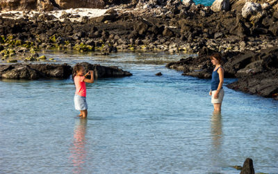 Luxury Galapagos Islands Tours
