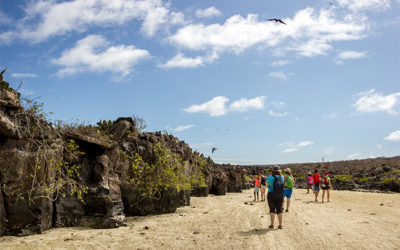 Tours to Galapagos Islands for groups