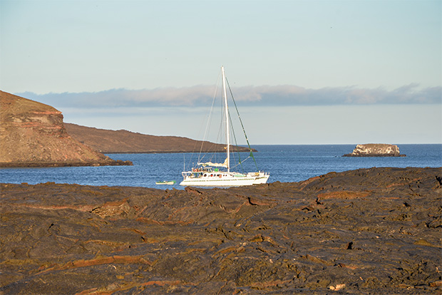 Cruises to the Galapagos Islands for 15 people December 2017