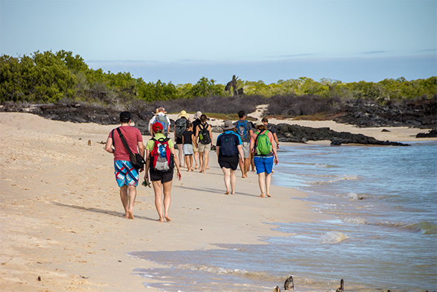 Cruises to the Galapagos Islands for 9 people October 2017