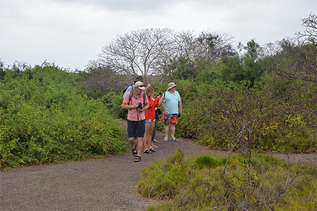 Tour Packages to the Galapagos Islands October 2017