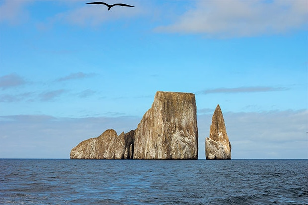 Cruise to the Galapagos Islands from Bahamas