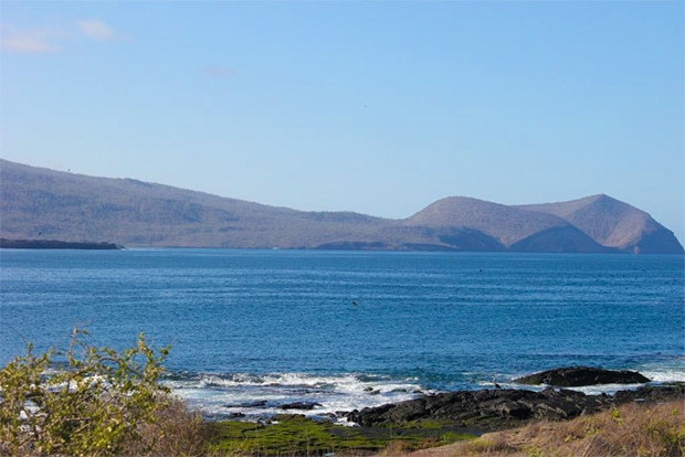 Cruise to the Galapagos Islands from Guinea