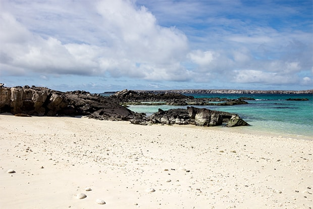 Cruise to the Galapagos Islands from Indonesia