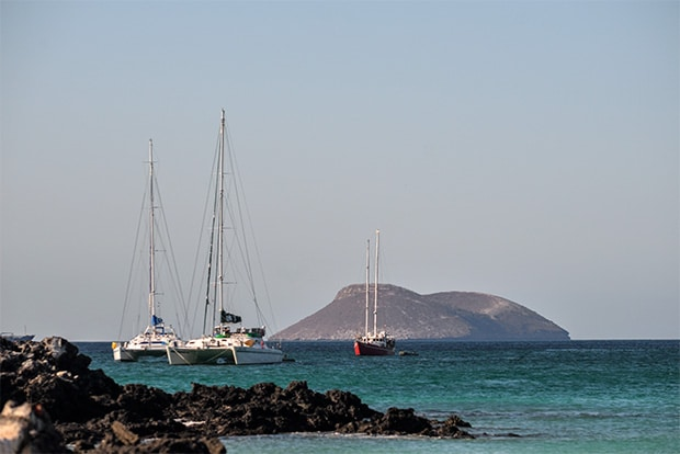 Cruise to the Galapagos Islands from Ireland