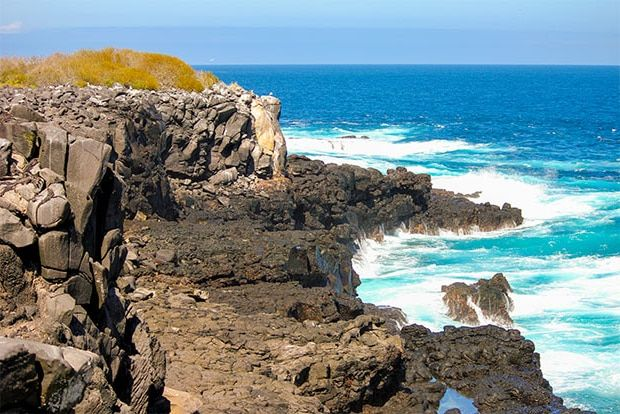 Cruise to the Galapagos Islands from Philippines