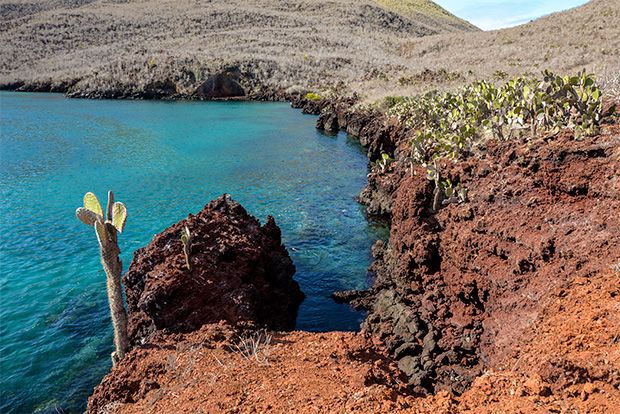 Cruise to the Galapagos Islands from Saint Kitts and Nevis