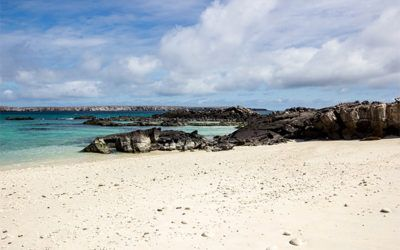 Cruises to Galapagos Islands for Carnival
