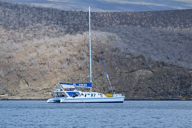Cruises to Galapagos Islands for next week