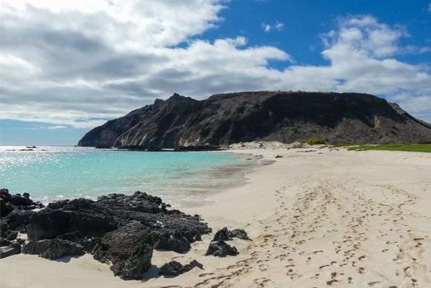 Birthday to the Galapagos Islands February 2018