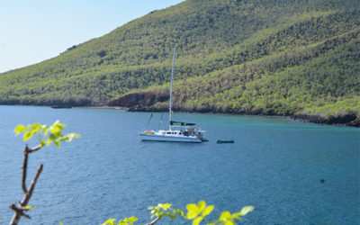 Romantic Cruises to the Galapagos Islands February 2018