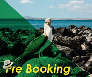 Galapagos Cruises Pre Booking