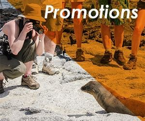 Galapagos Cruises Promotions