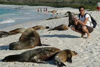 Galapagos Liveaboard Tourism to the Galapagos Islands in New Year