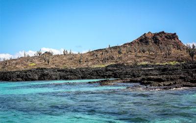 Ecoventura.com Crucero por las Islas Galápagos