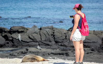 Searching the Galapagos Islands on Youtube