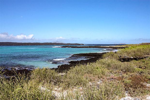 Catamaranes de lujo a las Islas Galápagos enero 2020