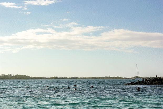 Catamaranes familiares a las Islas Galápagos diciembre 2019