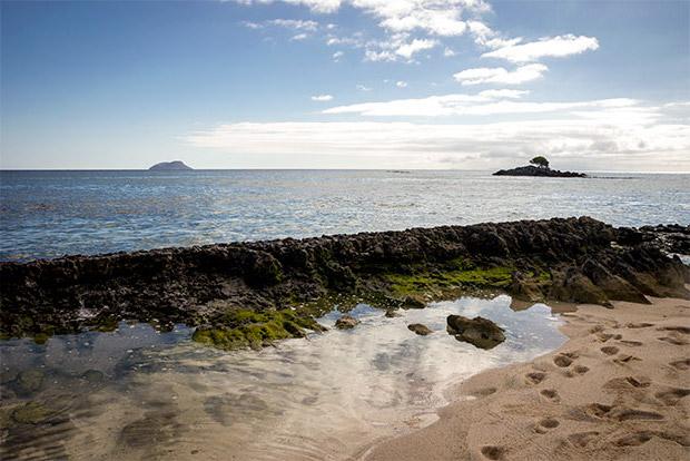 Catamaranes para cuatro personas a las Islas Galápagos junio 2020