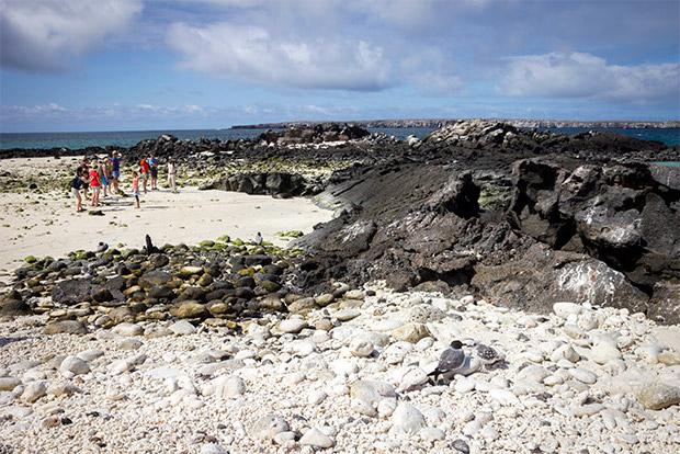Catamaranes para cuatro personas a las Islas Galápagos mayo 2020
