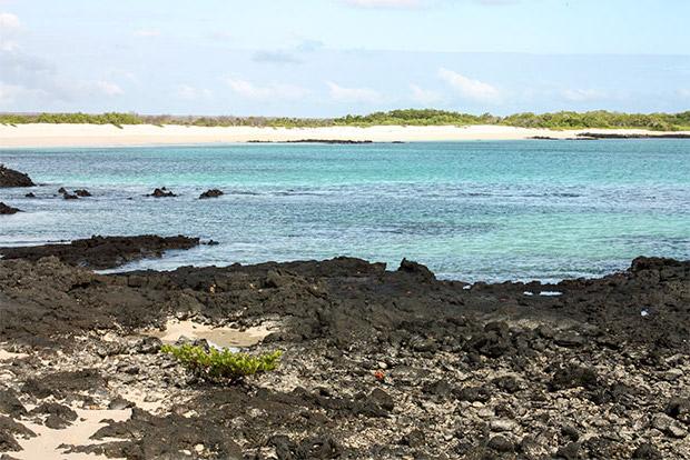 Catamaranes para dos personas a las Islas Galápagos abril 2020