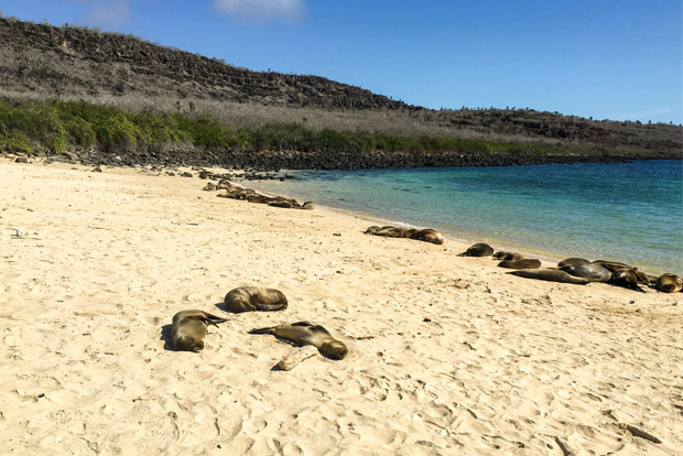 Catamaranes para dos personas a las Islas Galápagos agosto 2017