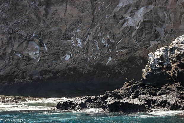 Cruceros a las Islas Galápagos en Familia 2017