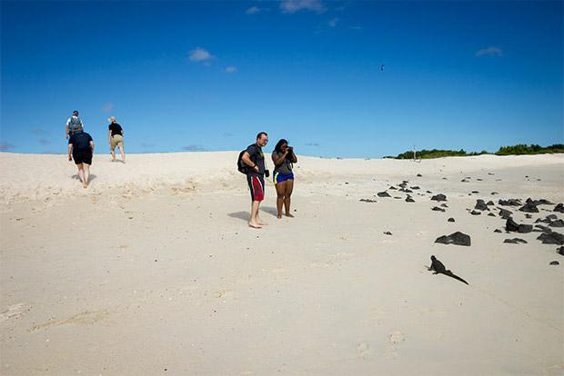 Cruceros a las Islas Galápagos mayo 2020