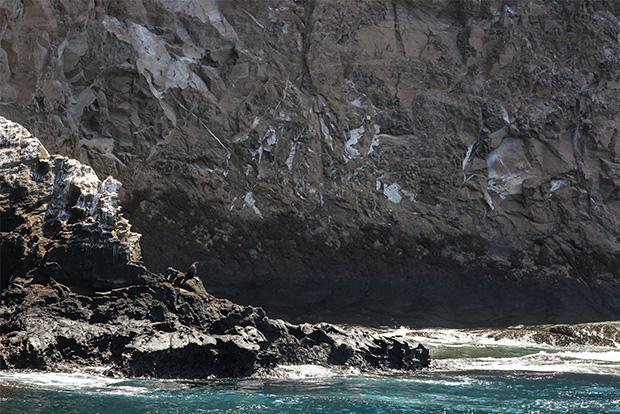 Cruceros a las Islas Galápagos octubre 2019