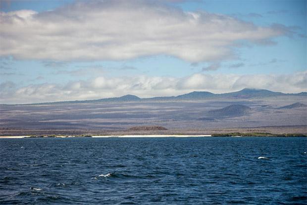 Cruceros a las Islas Galápagos para 10 personas enero 2020