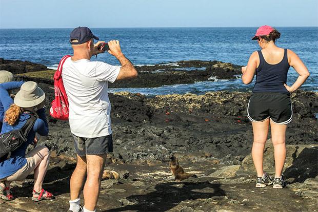 Cruceros a las Islas Galápagos para 12 personas abril 2020