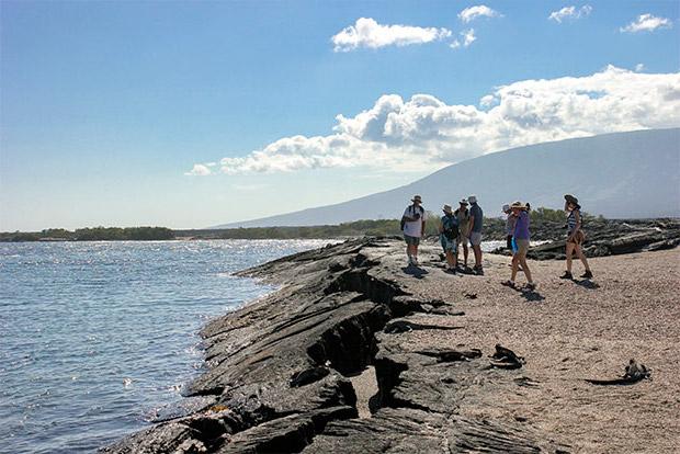 Cruceros a las Islas Galápagos para 15 personas abril 2017