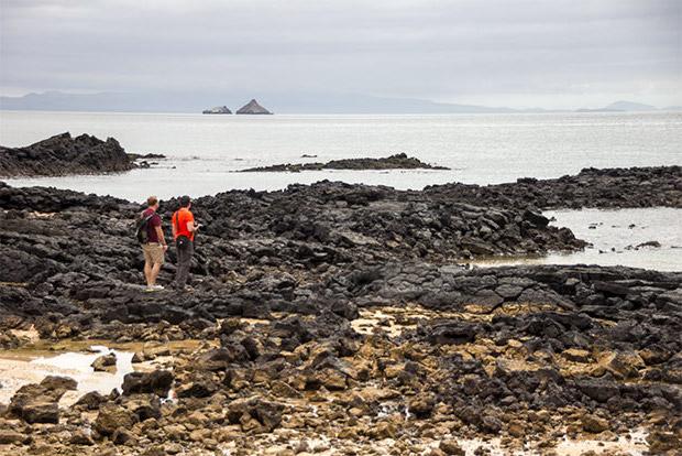 Cruceros a las Islas Galápagos para 16 personas enero 2020