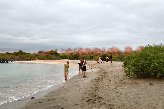 Cruceros a las Islas Galápagos para 3 personas noviembre 2019