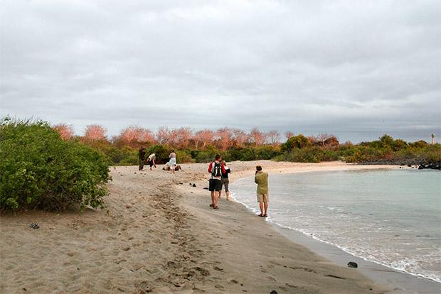 Cruceros a las Islas Galápagos para 4 personas febrero 2020