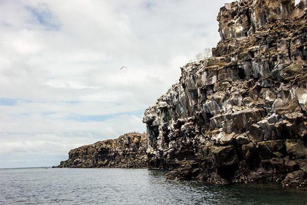Cruceros a las Islas Galápagos para 5 personas julio 2020