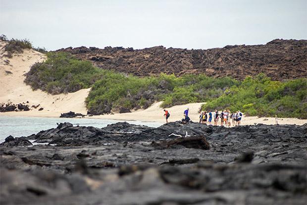 Cruceros a las Islas Galápagos para 6 personas agosto 2020