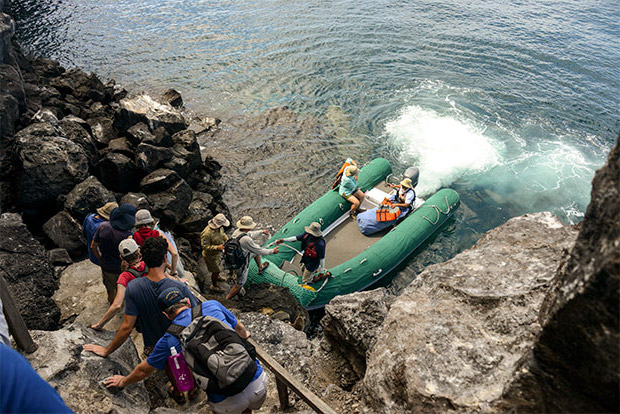 Cruceros a las Islas Galápagos para 7 personas enero 2017