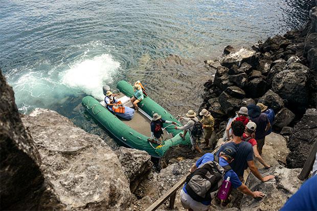 Cruceros a las Islas Galápagos para 8 personas noviembre 2019