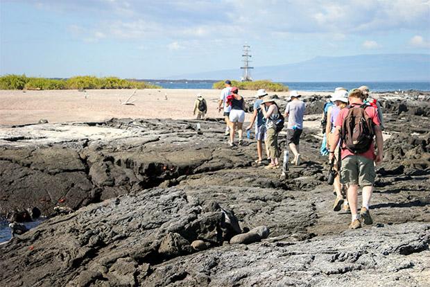 Cruceros a las Islas Galápagos para 9 personas febrero 2020
