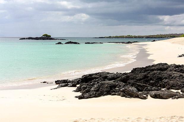 Cruceros a las Islas Galápagos para Adultos 2017