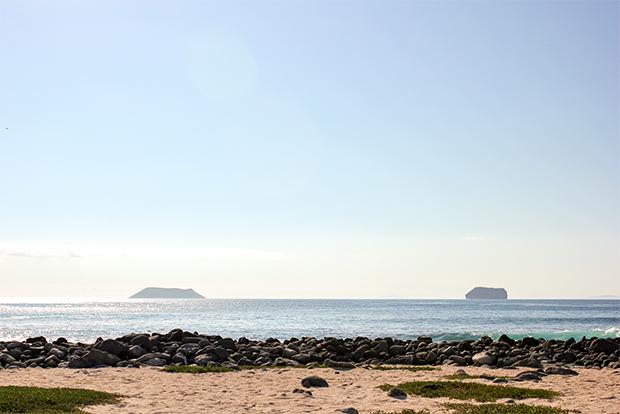 Cruceros a las Islas Galápagos para Millonarios