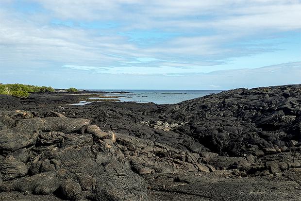 Cruceros a las Islas Galápagos para Solteros