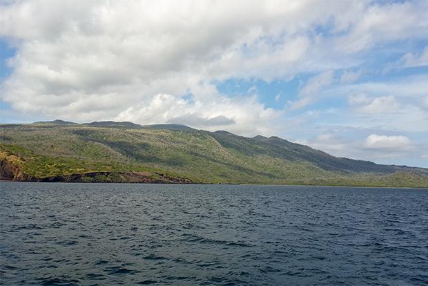 Cruceros a las Islas Galápagos para Vegetarianos